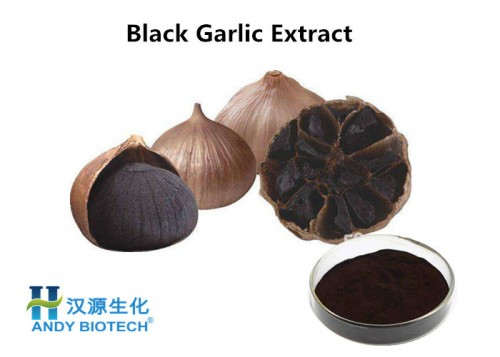 Black-Garlic-Extract-Powder.jpg
